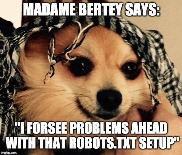 "MADAME BERTEY SAYS: ""I FORSEE PROBLEMS AHEAD WITH THAT ROBOTS.TXT SETUP"" 