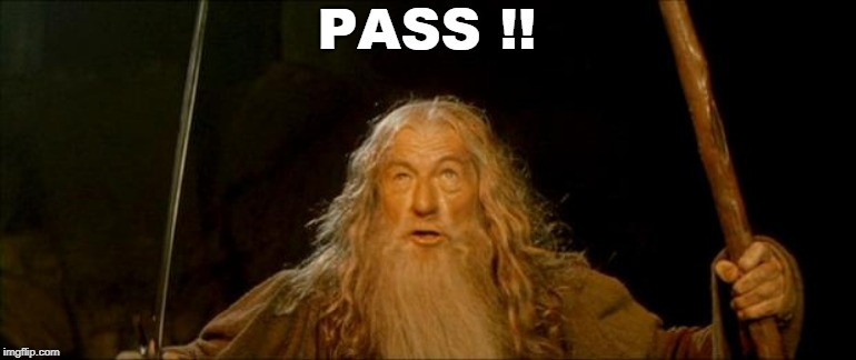 gandalf you shall not pass | PASS !! | image tagged in gandalf you shall not pass | made w/ Imgflip meme maker
