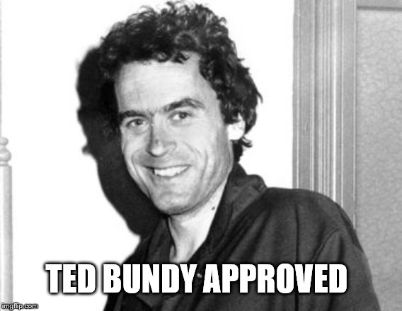 Ted Bundy | TED BUNDY APPROVED | image tagged in ted bundy | made w/ Imgflip meme maker