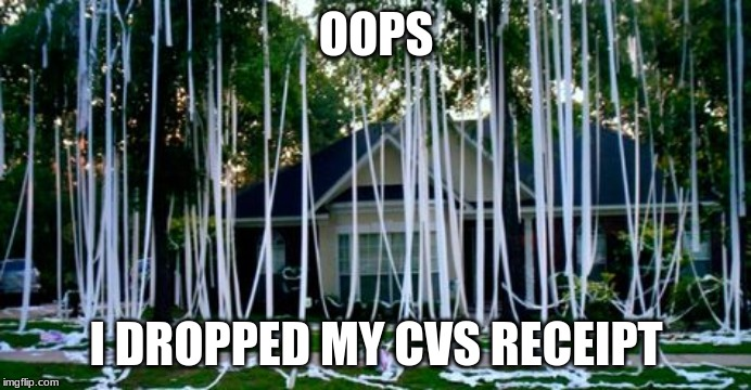 OOPS I DROPPED MY CVS RECEIPT | image tagged in toilet paper | made w/ Imgflip meme maker