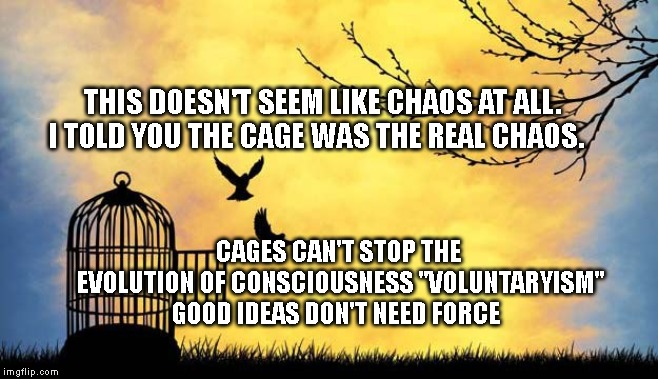 "THIS DOESN'T SEEM LIKE CHAOS AT ALL. I TOLD YOU THE CAGE WAS THE REAL CHAOS. CAGES CAN'T STOP THE EVOLUTION OF CONSCIOUSNESS ""VOLUNTARYISM""  