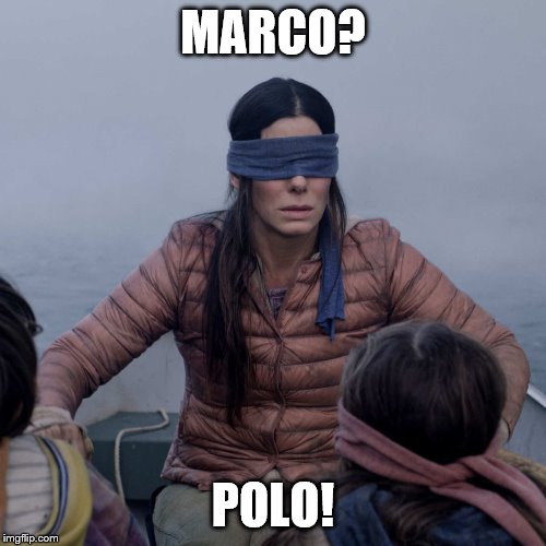 Bird Box Meme | MARCO? POLO! | image tagged in memes,bird box | made w/ Imgflip meme maker
