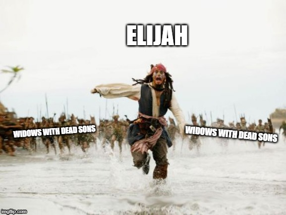 Jack Sparrow Being Chased Meme | WIDOWS WITH DEAD SONS ELIJAH WIDOWS WITH DEAD SONS | image tagged in memes,jack sparrow being chased | made w/ Imgflip meme maker