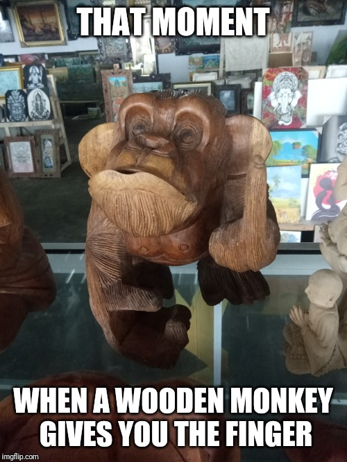 What nerve! | THAT MOMENT WHEN A WOODEN MONKEY GIVES YOU THE FINGER | image tagged in wooden monkey,finger | made w/ Imgflip meme maker