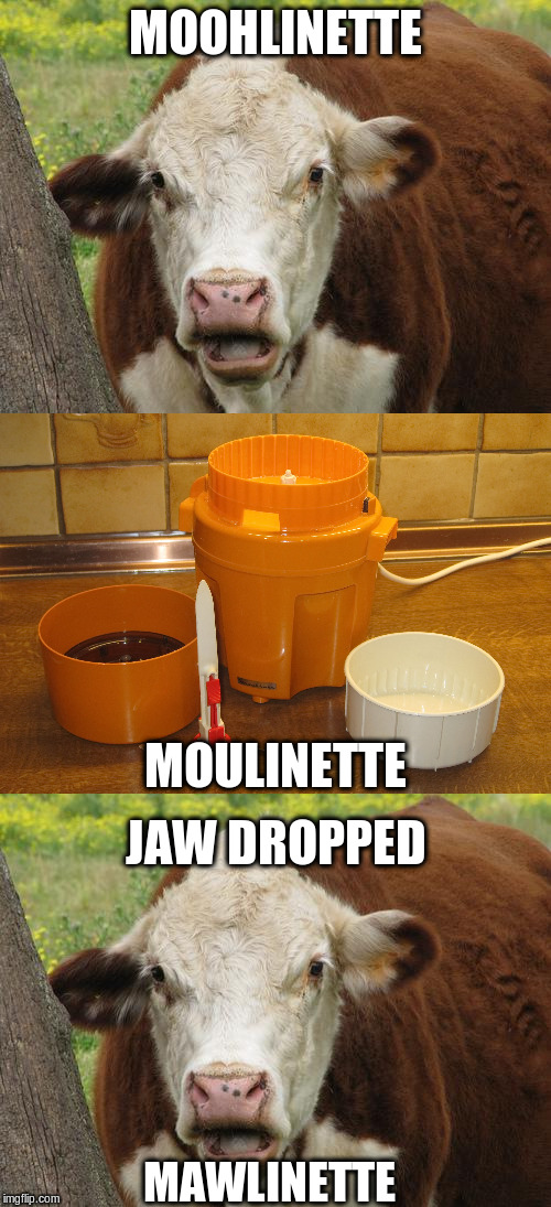 MOOHLINETTE JAW DROPPED MOULINETTE MAWLINETTE | image tagged in cow wut | made w/ Imgflip meme maker