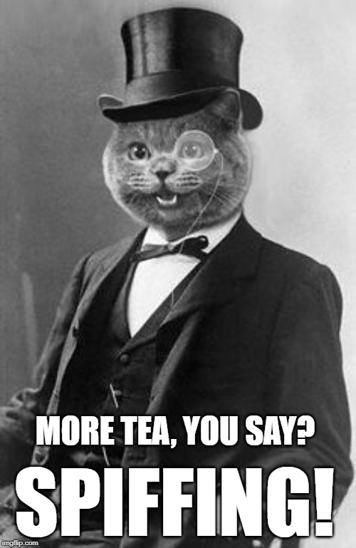 Spiffing Cat | MORE TEA, YOU SAY? SPIFFING! | image tagged in spiffing cat | made w/ Imgflip meme maker