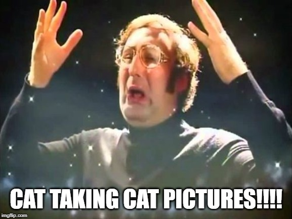Mind Blown | CAT TAKING CAT PICTURES!!!! | image tagged in mind blown | made w/ Imgflip meme maker