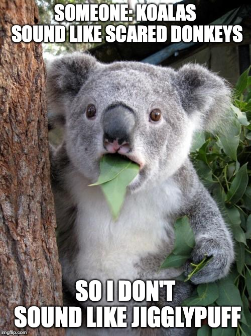 Surprised Koala | SOMEONE: KOALAS SOUND LIKE SCARED DONKEYS SO I DON'T SOUND LIKE JIGGLYPUFF | image tagged in memes,surprised koala,funny,sound,pokemon,jigglypuff | made w/ Imgflip meme maker