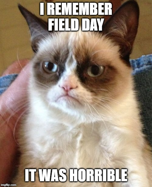 Grumpy Cat Meme | I REMEMBER FIELD DAY IT WAS HORRIBLE | image tagged in memes,grumpy cat | made w/ Imgflip meme maker