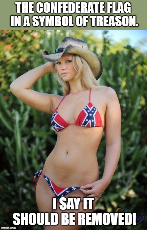Confederate Bikini | THE CONFEDERATE FLAG IN A SYMBOL OF TREASON. I SAY IT SHOULD BE REMOVED! | image tagged in confederate bikini | made w/ Imgflip meme maker