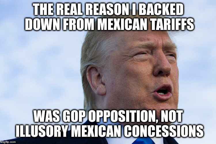 Well, obviously! | THE REAL REASON I BACKED DOWN FROM MEXICAN TARIFFS WAS GOP OPPOSITION, NOT ILLUSORY MEXICAN CONCESSIONS | image tagged in humor,trump,mexican tariffs,immigration,con artist | made w/ Imgflip meme maker