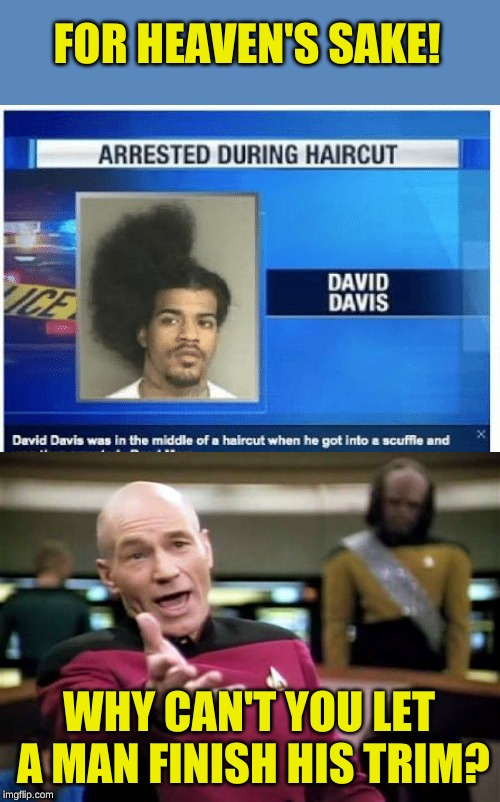 I hope the prison has a good barber | FOR HEAVEN'S SAKE! WHY CAN'T YOU LET A MAN FINISH HIS TRIM? | image tagged in memes,picard wtf,bad hair day,dresses up as x for halloween,see nobody cares,aint got no time fo dat | made w/ Imgflip meme maker