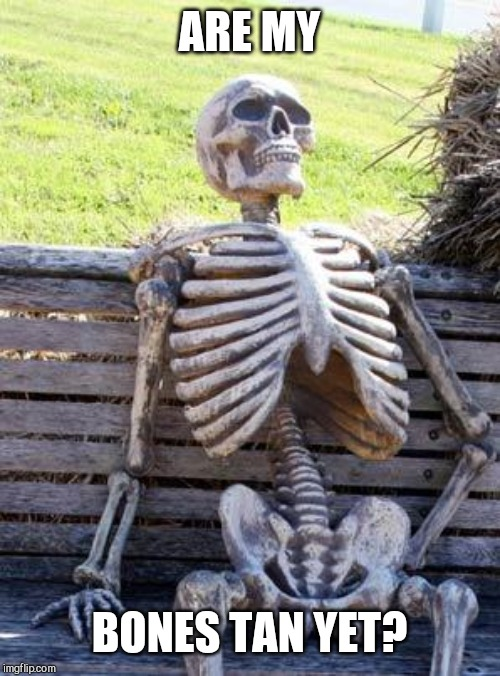 Waiting Skeleton | ARE MY BONES TAN YET? | image tagged in memes,waiting skeleton | made w/ Imgflip meme maker