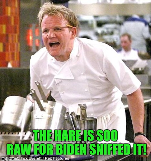 If you cant stand the heat... stay out the kitchen | THE HARE IS SOO RAW FOR BIDEN SNIFFED IT! | image tagged in memes,chef gordon ramsay | made w/ Imgflip meme maker