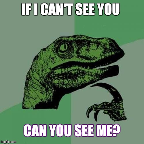 Philosoraptor Meme | IF I CAN'T SEE YOU CAN YOU SEE ME? | image tagged in memes,philosoraptor | made w/ Imgflip meme maker
