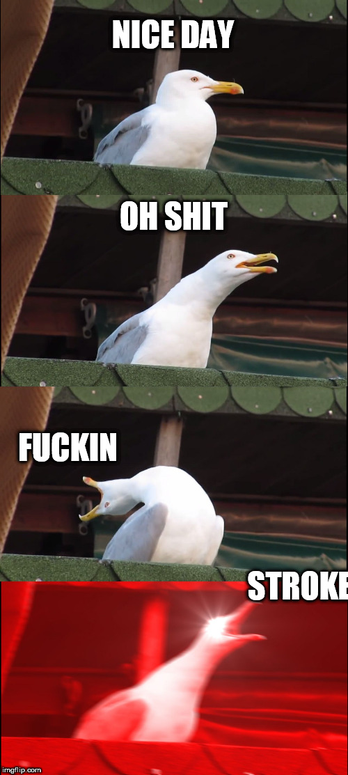Inhaling Seagull Meme | NICE DAY OH SHIT F**KIN STROKE | image tagged in memes,inhaling seagull | made w/ Imgflip meme maker