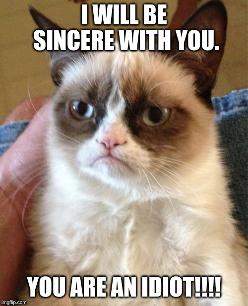 Grumpy Cat Meme | I WILL BE SINCERE WITH YOU. YOU ARE AN IDIOT!!!! | image tagged in memes,grumpy cat | made w/ Imgflip meme maker