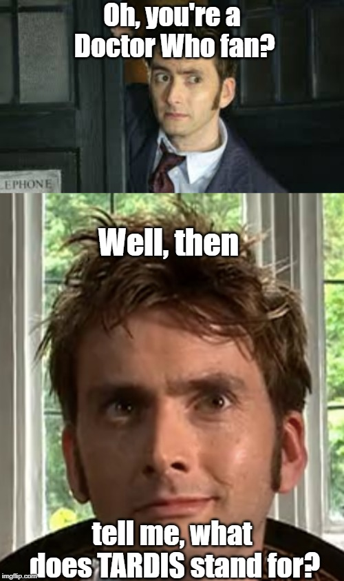 Oh, you're a Doctor Who fan? tell me, what does TARDIS stand for? Well, then | image tagged in smug ten,tennant side-eye | made w/ Imgflip meme maker