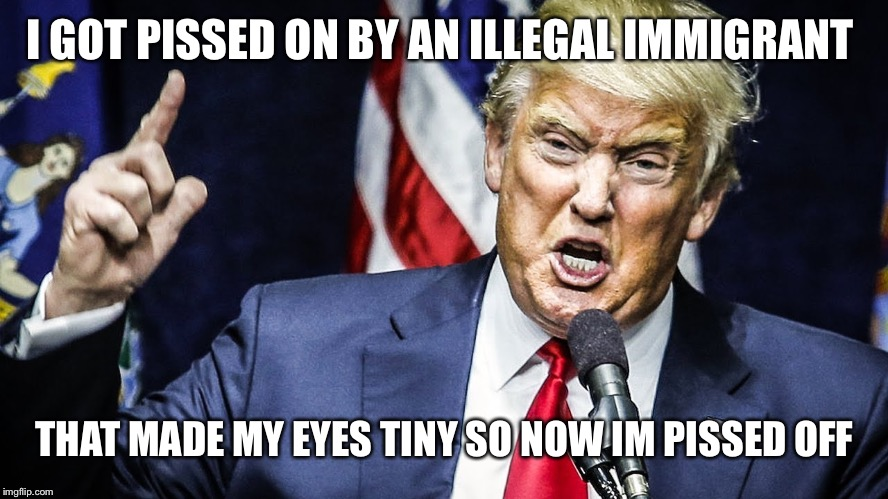 I GOT PISSED ON BY AN ILLEGAL IMMIGRANT THAT MADE MY EYES TINY SO NOW IM PISSED OFF | image tagged in trump angry | made w/ Imgflip meme maker