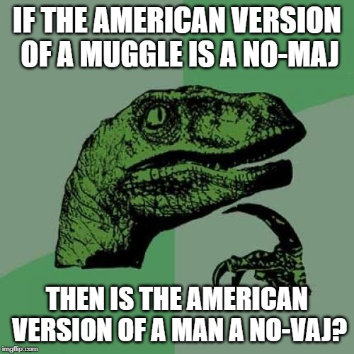 muggle vs no-maj | IF THE AMERICAN VERSION OF A MUGGLE IS A NO-MAJ THEN IS THE AMERICAN VERSION OF A MAN A NO-VAJ? | image tagged in memes,philosoraptor,muggle,fantastic beasts and where to find them,harry potter | made w/ Imgflip meme maker