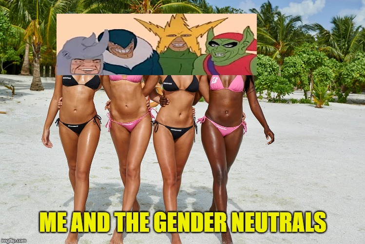 PC Gone Mad | ME AND THE GENDER NEUTRALS | image tagged in me and the boys,gender identity | made w/ Imgflip meme maker