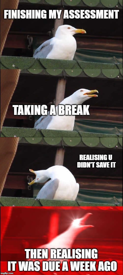assessment troubles | FINISHING MY ASSESSMENT TAKING A BREAK REALISING U DIDN'T SAVE IT THEN REALISING IT WAS DUE A WEEK AGO | image tagged in memes,inhaling seagull | made w/ Imgflip meme maker