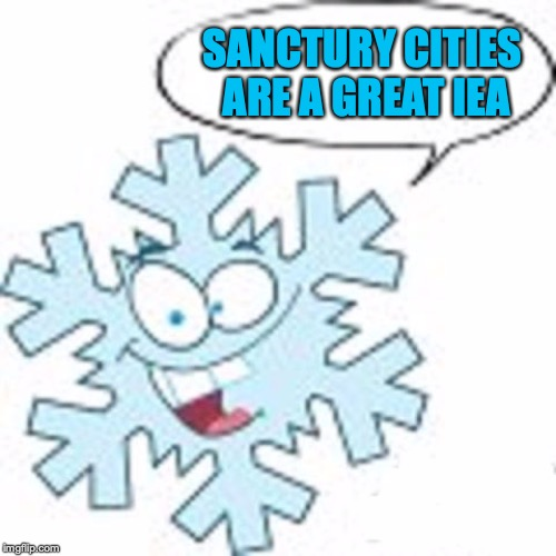 Snowflake | SANCTURY CITIES ARE A GREAT IEA | image tagged in snowflake | made w/ Imgflip meme maker