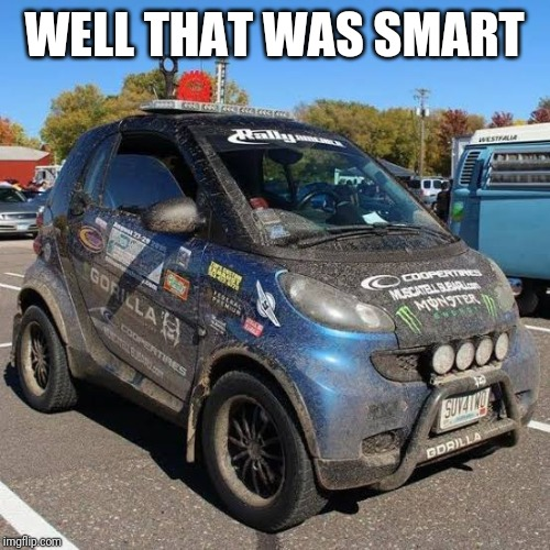 Smart Rally Car | WELL THAT WAS SMART | image tagged in smart car | made w/ Imgflip meme maker