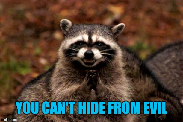 Evil Plotting Raccoon Meme | YOU CAN'T HIDE FROM EVIL | image tagged in memes,evil plotting raccoon | made w/ Imgflip meme maker