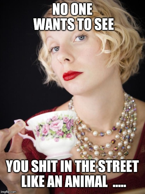 NO ONE WANTS TO SEE YOU SHIT IN THE STREET LIKE AN ANIMAL  ..... | image tagged in snobby girl | made w/ Imgflip meme maker