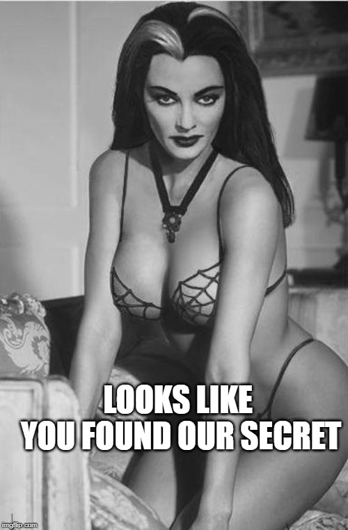 lily munster sexy | LOOKS LIKE YOU FOUND OUR SECRET | image tagged in lily munster sexy | made w/ Imgflip meme maker