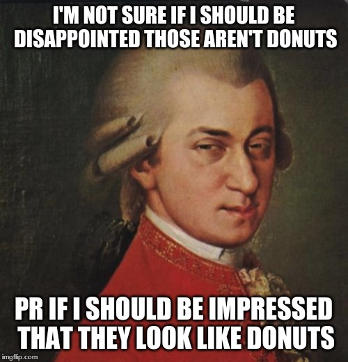 Mozart Not Sure Meme | I'M NOT SURE IF I SHOULD BE DISAPPOINTED THOSE AREN'T DONUTS PR IF I SHOULD BE IMPRESSED THAT THEY LOOK LIKE DONUTS | image tagged in memes,mozart not sure | made w/ Imgflip meme maker