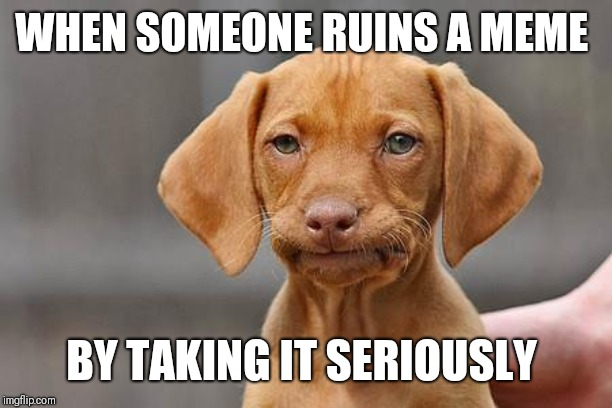 Dissapointed puppy |  WHEN SOMEONE RUINS A MEME; BY TAKING IT SERIOUSLY | image tagged in dissapointed puppy,why so serious | made w/ Imgflip meme maker
