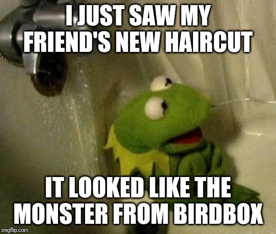 Kermit on Shower | I JUST SAW MY FRIEND'S NEW HAIRCUT IT LOOKED LIKE THE MONSTER FROM BIRDBOX | image tagged in kermit on shower | made w/ Imgflip meme maker