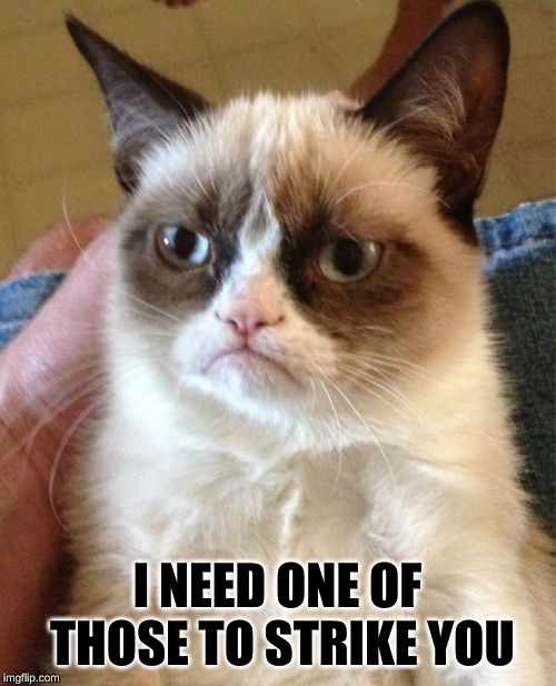 Grumpy Cat Meme | I NEED ONE OF THOSE TO STRIKE YOU | image tagged in memes,grumpy cat | made w/ Imgflip meme maker