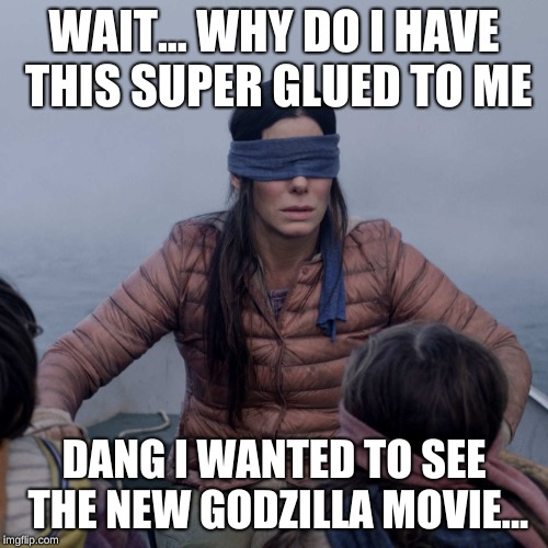 Bird Box |  WAIT... WHY DO I HAVE THIS SUPER GLUED TO ME; DANG I WANTED TO SEE THE NEW GODZILLA MOVIE... | image tagged in memes,bird box | made w/ Imgflip meme maker