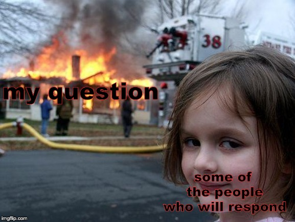 my question some of the people who will respond | image tagged in memes,disaster girl | made w/ Imgflip meme maker