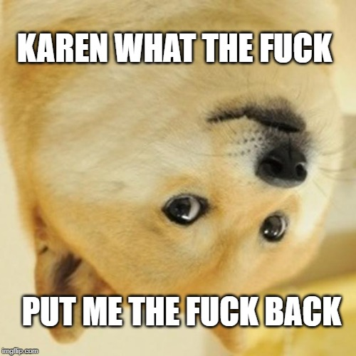 Doge Meme | KAREN WHAT THE F**K PUT ME THE F**K BACK | image tagged in memes,doge | made w/ Imgflip meme maker
