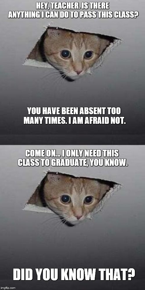 I only need this class to graduate! | HEY, TEACHER. IS THERE ANYTHING I CAN DO TO PASS THIS CLASS? YOU HAVE BEEN ABSENT TOO MANY TIMES. I AM AFRAID NOT. COME ON... I ONLY NEED TH | image tagged in memes,ceiling cat | made w/ Imgflip meme maker