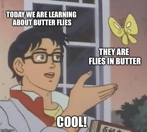 Is This A Pigeon Meme | TODAY WE ARE LEARNING ABOUT BUTTER FLIES THEY ARE FLIES IN BUTTER COOL! | image tagged in memes,is this a pigeon | made w/ Imgflip meme maker