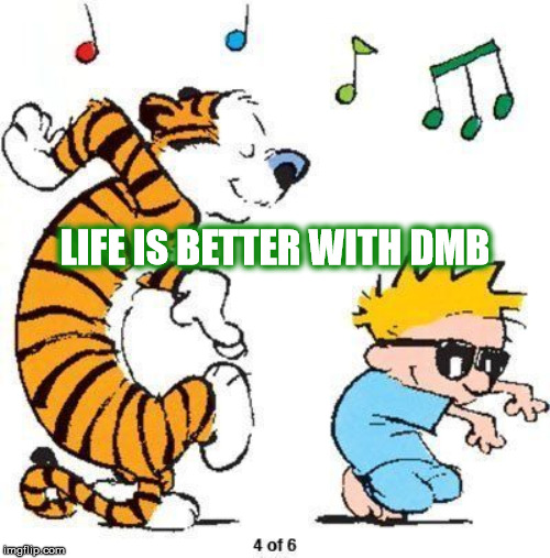 LIFE IS BETTER WITH DMB | LIFE IS BETTER WITH DMB | image tagged in dmb,dave matthews band,calvin and hobbes,life,better,life is better with dmb | made w/ Imgflip meme maker