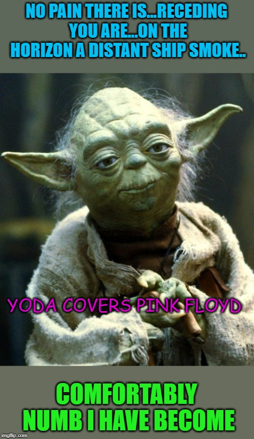 Star Wars Yoda Meme | NO PAIN THERE IS...RECEDING YOU ARE...ON THE HORIZON A DISTANT SHIP SMOKE.. COMFORTABLY NUMB I HAVE BECOME YODA COVERS PINK FLOYD | image tagged in memes,star wars yoda | made w/ Imgflip meme maker
