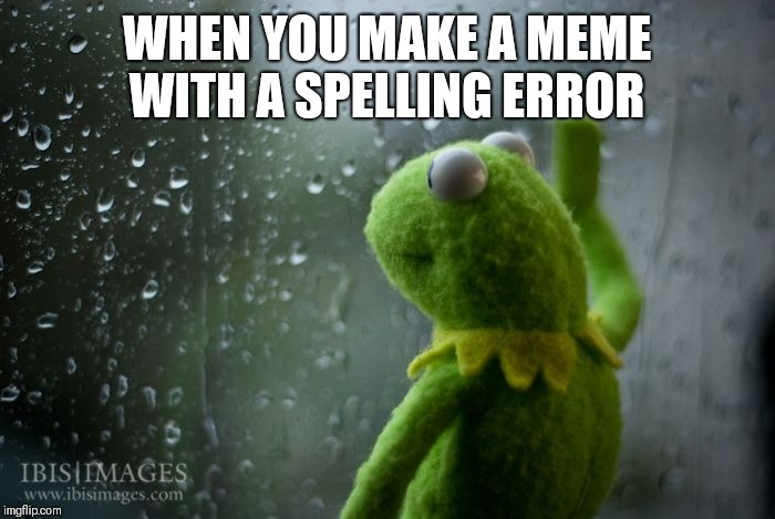 kermit window | WHEN YOU MAKE A MEME WITH A SPELLING ERROR | image tagged in kermit window | made w/ Imgflip meme maker
