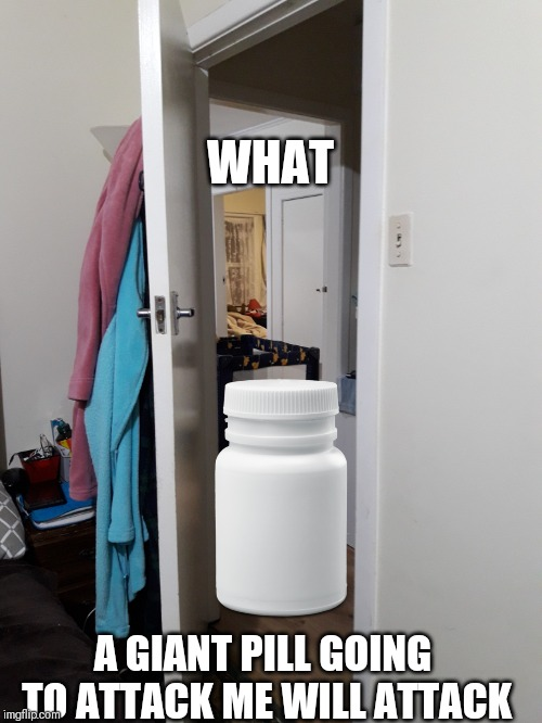 Random thing in your house | WHAT A GIANT PILL GOING TO ATTACK ME WILL ATTACK | image tagged in random thing in your house | made w/ Imgflip meme maker