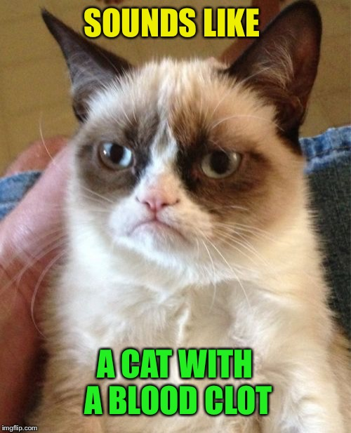 Grumpy Cat Meme | SOUNDS LIKE A CAT WITH A BLOOD CLOT | image tagged in memes,grumpy cat | made w/ Imgflip meme maker