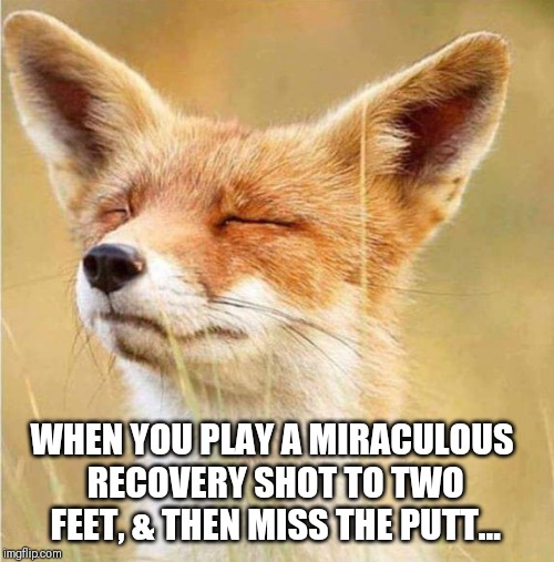 WHEN YOU PLAY A MIRACULOUS RECOVERY SHOT TO TWO FEET, & THEN MISS THE PUTT... | image tagged in memes,golf,fox,hacker | made w/ Imgflip meme maker