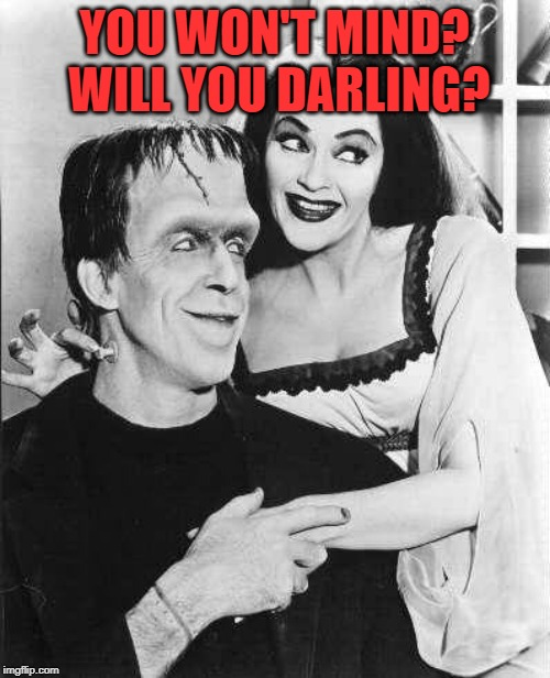 Herman and Lily Munster | YOU WON'T MIND? WILL YOU DARLING? | image tagged in herman and lily munster | made w/ Imgflip meme maker