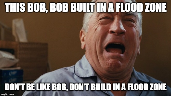 THIS BOB, BOB BUILT IN A FLOOD ZONE DON'T BE LIKE BOB, DON'T BUILD IN A FLOOD ZONE | image tagged in crying robert de niro | made w/ Imgflip meme maker