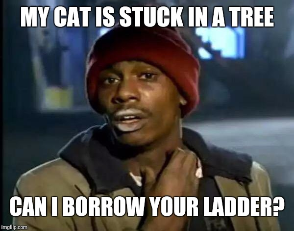 MY CAT IS STUCK IN A TREE CAN I BORROW YOUR LADDER? | image tagged in memes,y'all got any more of that | made w/ Imgflip meme maker