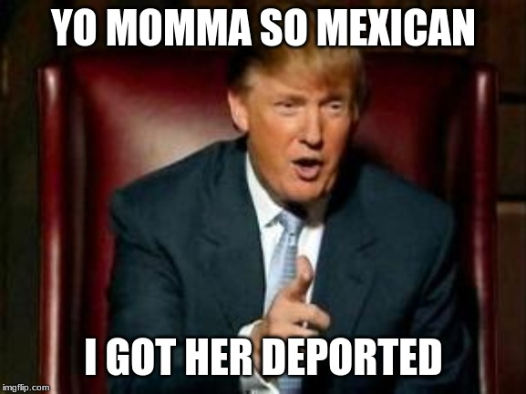 Donald Trump | YO MOMMA SO MEXICAN I GOT HER DEPORTED | image tagged in donald trump | made w/ Imgflip meme maker